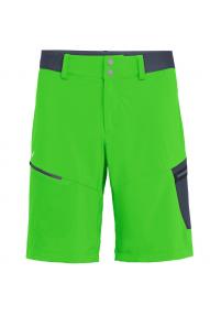 Men's shorts Salewa Pedroc Cargo 2 DST