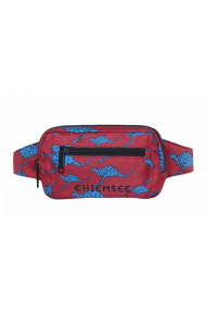 Chiemsee Travel Belt Pouch