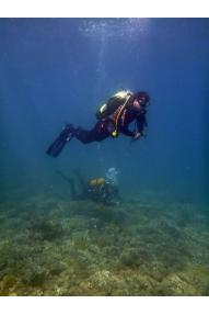 corso d'immersione per principianti PADI
