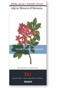 Alpine flowers of Slovenia